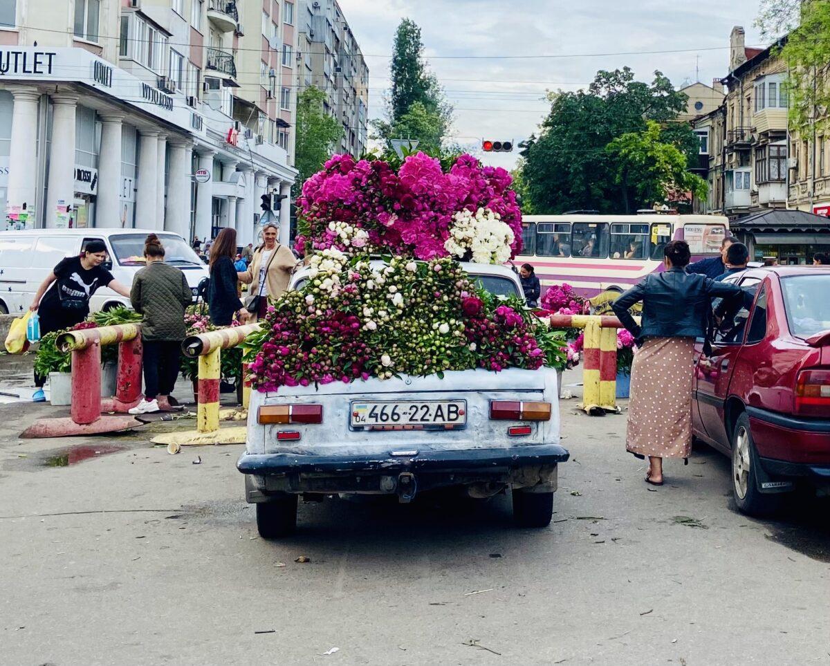 Sechs häufige Fragen zu Odesa